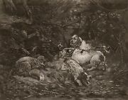Dog Wirehaired Pointing Griffon Hunting Foxes Huge Folio-sized 1880s Print