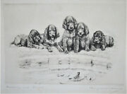 Marguerite Kirmse- Breaking Into Society  Original Etching Signed Free Ship Us