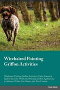 Wirehaired Pointing Griffon Activities Wirehaired Pointing By Joshua Turner New