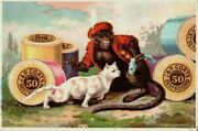 J And P Coats Spool Thread Circus Monkey Teases Cat Fish Victorian Trade Card
