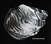 New In Box Steuben Glass Large Sea Shell Snail Ornamental Mother Of Pearl Heart