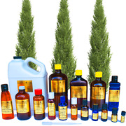 Cypress Essential Oil Pure Uncut Sizes 3ml To 1 Gallon