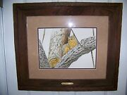 Lee Cable Original Painting Fox Squirell Royal Poinciana Naples Fl 10x141/2