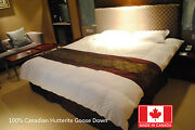 Best Canadian Goose Hutterite Down Duvet Comforters 850fill Power Made In Canada