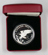 2013 Canada 20 1 Oz Fine Silver The Bald Eagle Returning From The Hunt