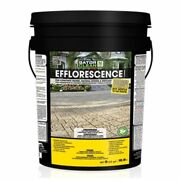 Alliance Gator Clean Efflorescence Cleaner 5 Gal For Pavers And Natural Stone