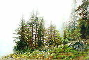 Set Of Four Reproductions Of Paintings Of Isle Royale National Park
