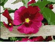 Petunia On Fence Needlepoint Kit Or Canvas Floral/flower/nature