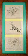 Paul Brown Drypoint Triptych 1931 Virginia Gold Cup/ 1932 Llangollen Farms And Nhs