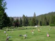 One Cemetary Plot Spokane Wa