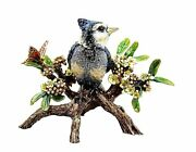 Jay Strongwater Anderson Blue Jay Bird On Branch Figurine New Usa