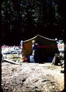 1956 Canada Fishing Trip Old Man Coming Out Of A Tent 35mm Slide N23 Coke 7-up