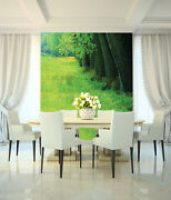 3d Green Grass Grove 45 Wall Paper Wall Print Decal Wall Deco Indoor Mural Carly