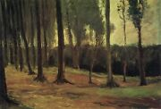 Vincent Van Gogh - Edge Of A Wood 1882 Hand Painted Canvas Oil Painting