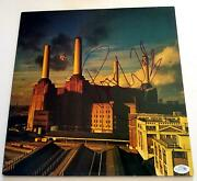 Pink Floyd Roger Waters Autographed Signed Album Record Lp Acoa
