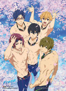 Free - Group In Pool With Sakura Wallscroll [new ] Poster Decor