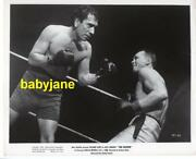 Richard Conte Vintage 8x10 Photo Barechested Boxer In Ring 1952 The Fighter
