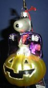 Polonaise Glass Ornament Halloween Snoopy, Ap1057, New In Box