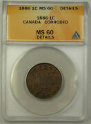 1886 Canada 1 Cent Penny Coin Anacs Ms-60 Details