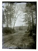 Dublin Nh 2 Glass Negatives Road Near Cemetery And Birches Back Of Cemetery C.1900