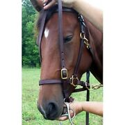 Ride 'n Tie® Halter Bridle Combo Top Seller Horses And Riders Love It