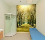3d Autumn Forest O599 Business Wallpaper Wall Mural Self-adhesive Commerce Amy