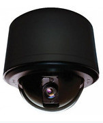 Pelco Sd429-pb-1 Analog Clear Indoor / Outdoor 29x Dome Camera, Black