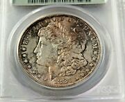 1881-s Morgan Silver Dollar Pcgs Ms65 Old Hold Toning True Collector