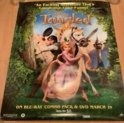 Zachary Zach Levi Flynn Rider Tangled Autographed Promo Poster Disney Signed