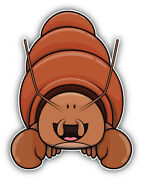 Funny Hermit Crab Cartoon Car Bumper Sticker Decal Sizesand039and039