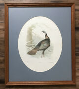 """Ned Smith Regal Hermit"""" Limited Edition Art Print Turkey Deer 503/4975 Nwtf"""