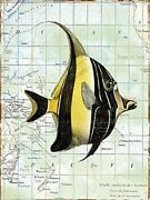 Canvas Nautical Journey Fish 24x18 Giclee Gallery Wrap Art Decor By Jean Plout
