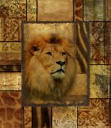 Art-print-pinto-wildlife-decorative-safari-ii-lion-on-paper-canvas-or-framed