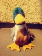 Ty Beanie Baby Jake The Duck Rare Error Tush Tag 1998 Swing Tag 1997andnbsp