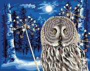 Paint By Numbers Painting The Picture With Owl Snow New Year