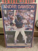 Andre Dawson Starline Poster Framed Chicago Cubs New