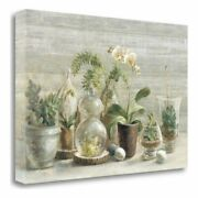 32 X 47 Greenhouse Orchids On Wood Giclee Print On Gallery Wrap Canvas