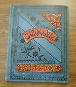 80+ Victorian Advertising Trade Cards And Others In Album Dated 1888 Witch Pixies