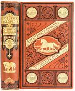 1871 Horse Ownerand039s Cyclopedia Breaking Thoroughbred Illustrated Fine Binding