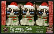 Grumpy Cat With Santa Hat Pathway Markers Lights Light Up Christmas Battery Rare
