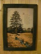 Primitive Country Framed Art Print By Robin Lee Vieira Ode To Trees 14x20