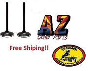 Yamaha Raptor Warrior Wolverine Grizzly 350 Kibblewhite Intake And Exhaust Valves