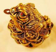 Copper Feng Shui Money Frog Statue Fungshui Wealth Decoration Bite Coin Lucky