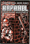 Raphael 1 Tmnt One Shot 1985 1st Print Signed By Eastman And Laird 1st Owner Rare