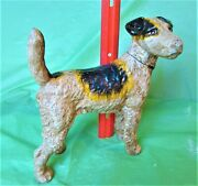 Antique Fox Terrier Cast Iron Door Stop Wire Haired Terrier 8-pounds Gorgeous
