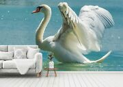 3d White Swan O296 Animal Wallpaper Wall Murals Removable Wallpaper Fay