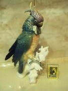 Rare Carl Jens Antique Statue Porcelain A Parrot Bird Figurine Germany Marked