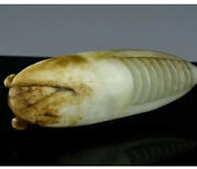 Fine Antique Chinese Carved Jade Cicada Bug Insect Pendant Ming Qing Dynasty