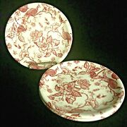 3 Biltons Peacock Bread And Butter Plates Red And White Made England Dessert 6.5