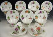 9 Old Nymphenburg Porcelain Hand Painted Floral Tea Cups And Saucers Molding
